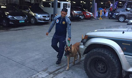 K9 Cebu city, PASSWORD K9